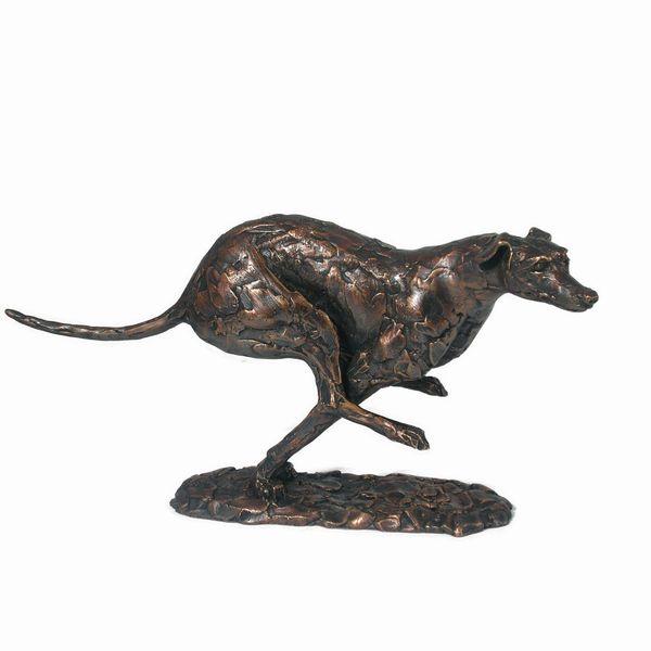 Greyhound Running