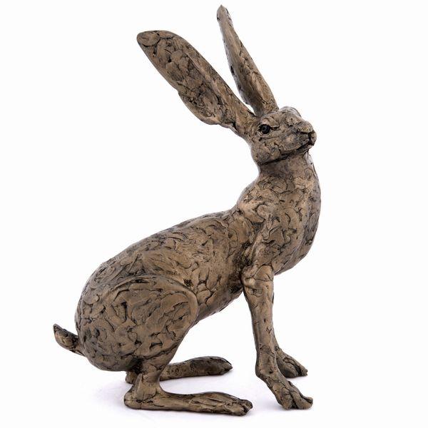 Tess - the Dorset Hare (Jill)