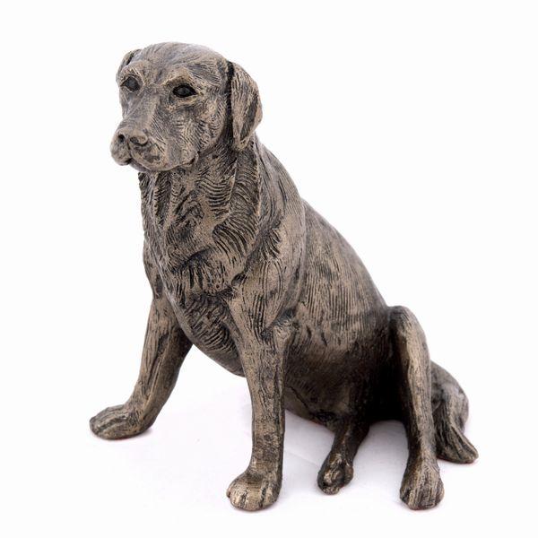 Nigel - Labrador sitting