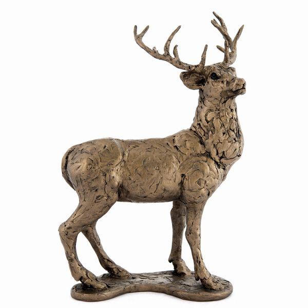 Red Deer - Stag