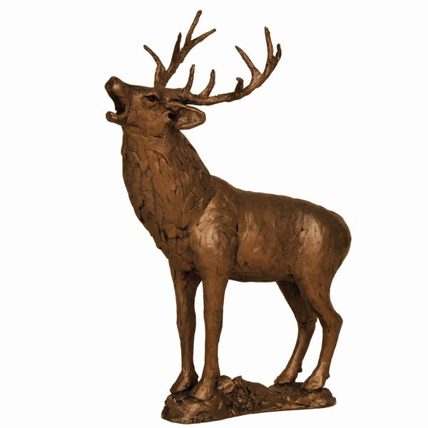 Stag Roaring (Rutting)