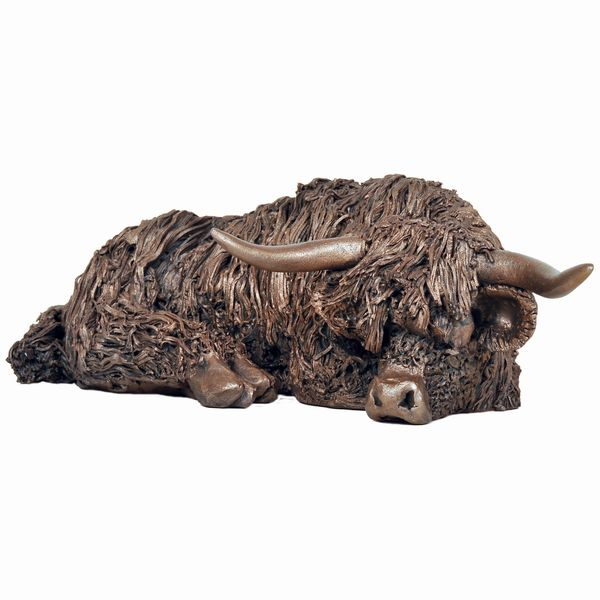 Highland Cow - resting