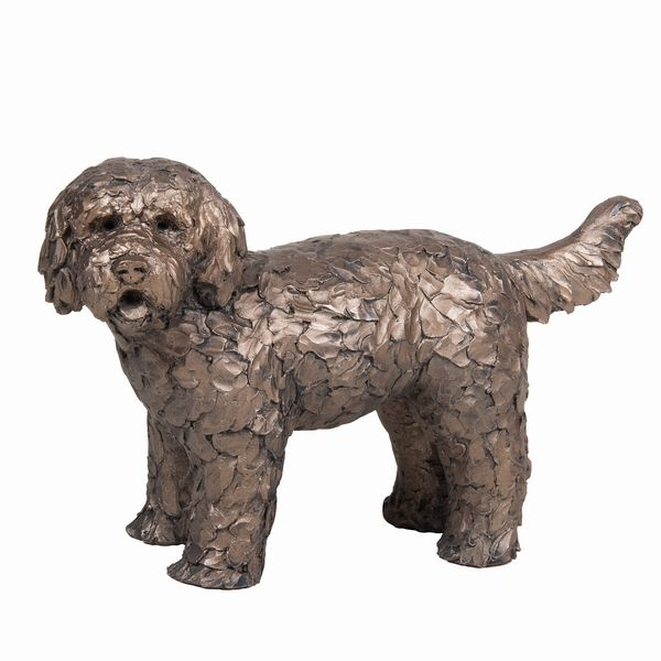 Button - Labradoodle standing
