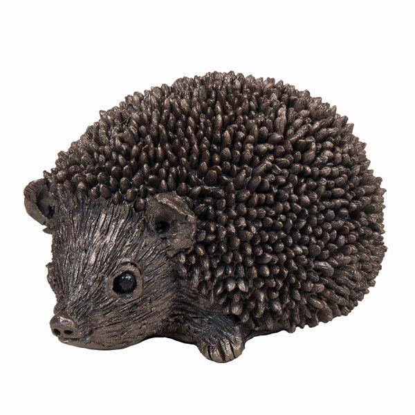 Squeak - Junior Hedgehog