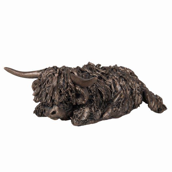 Morag sitting Highland Cow