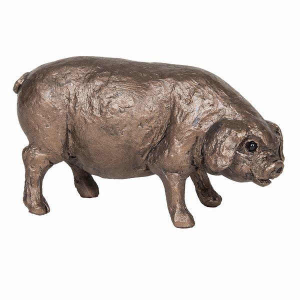Boris - Pig standing