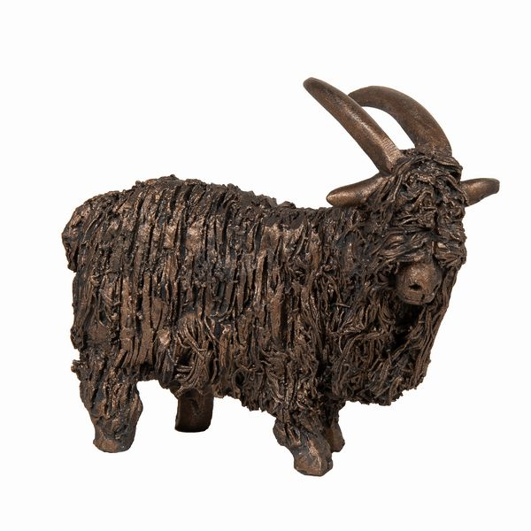 Feral Goat standing