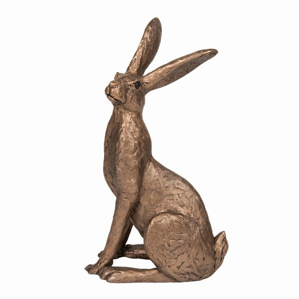 Tobias - sitting Hare
